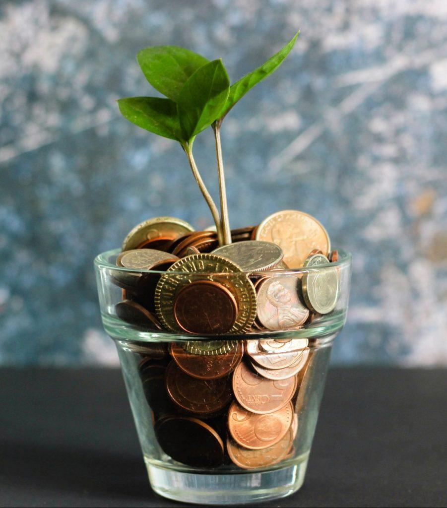 Fotografía de una maceta de cristal llena de monedas y con una pequeña planta, para ilustrar el pago de impuestos hablando del escándalo de El Rubius